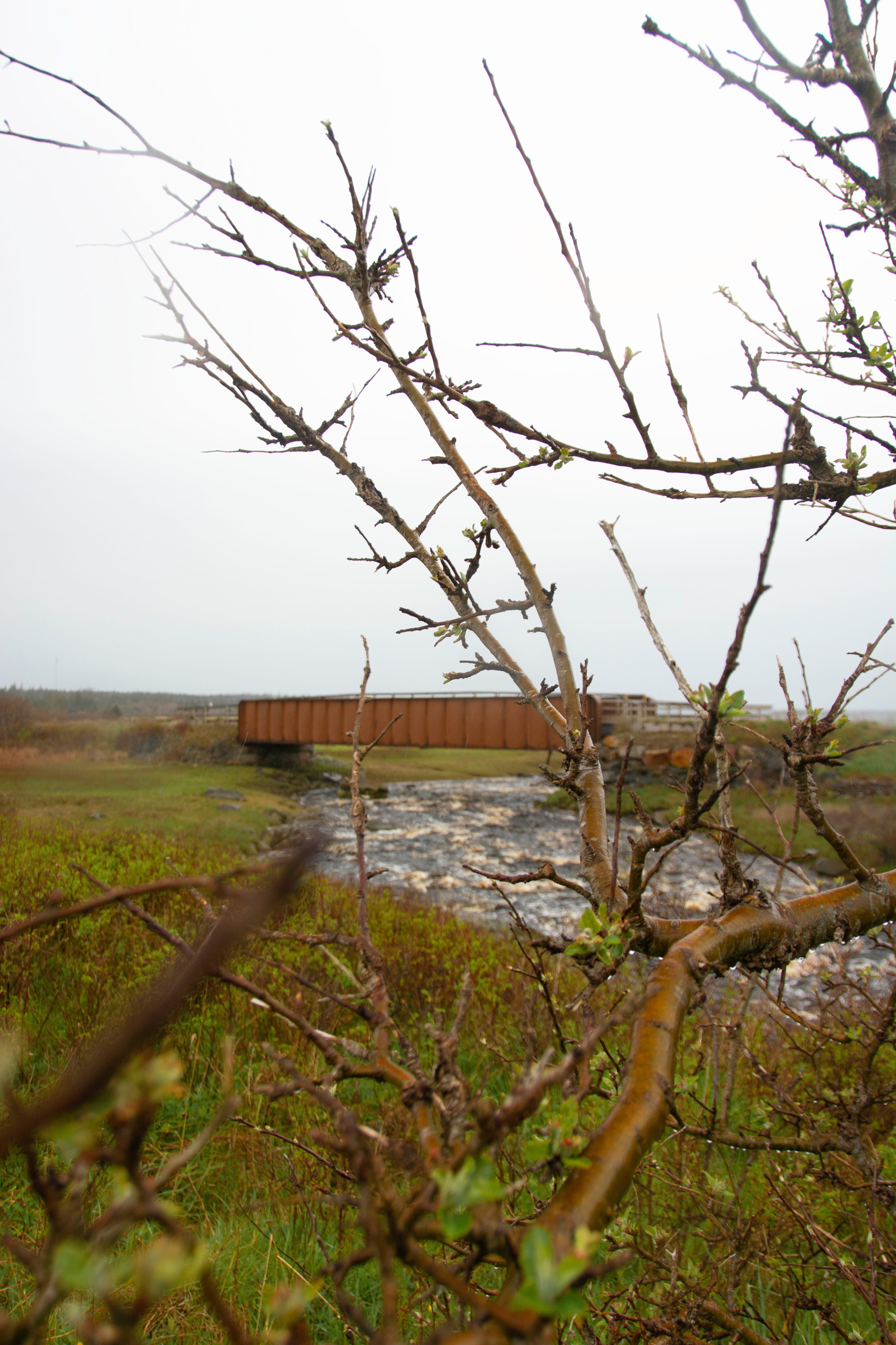 Bridge going across a river