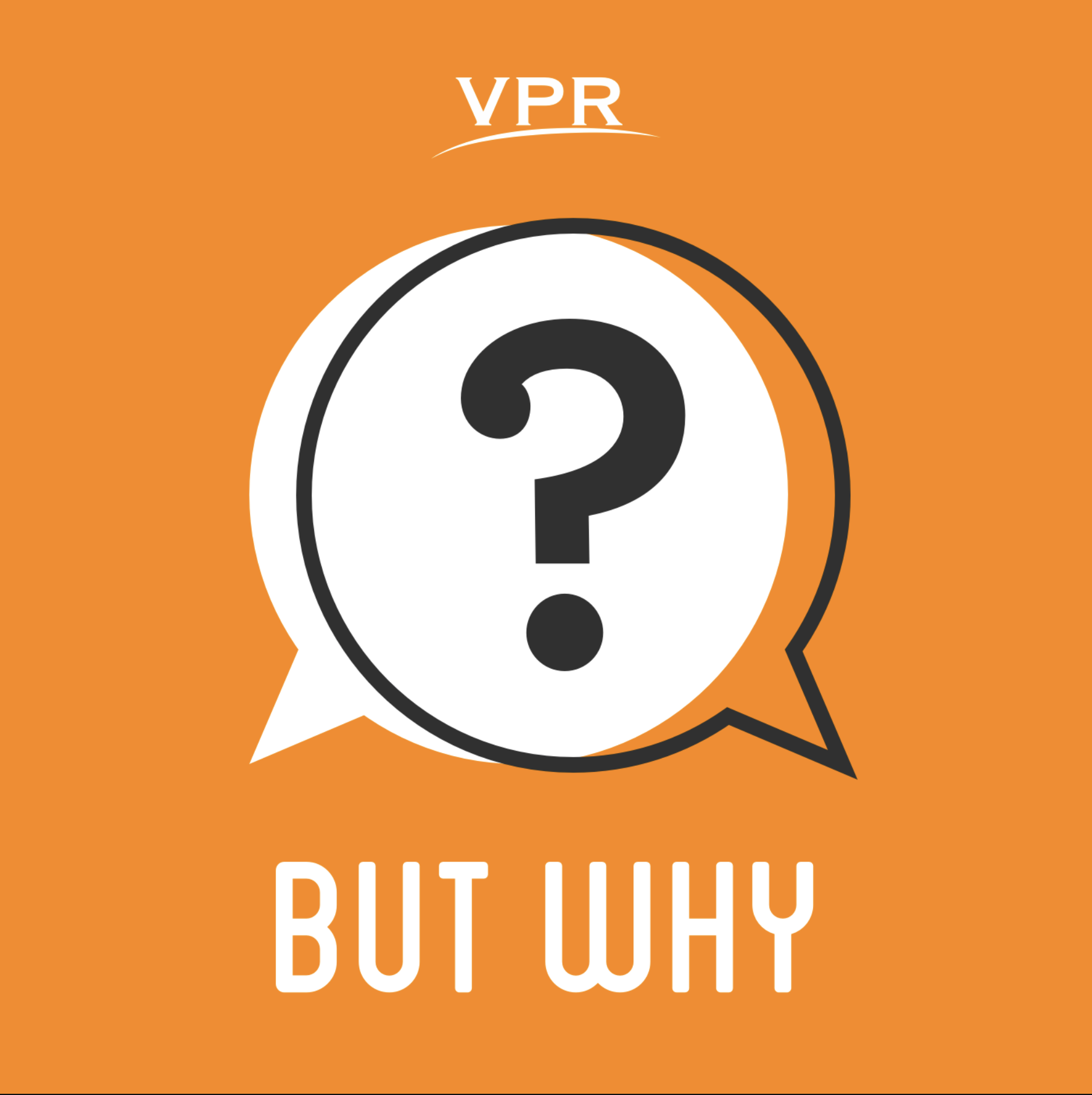 But Why Podcast