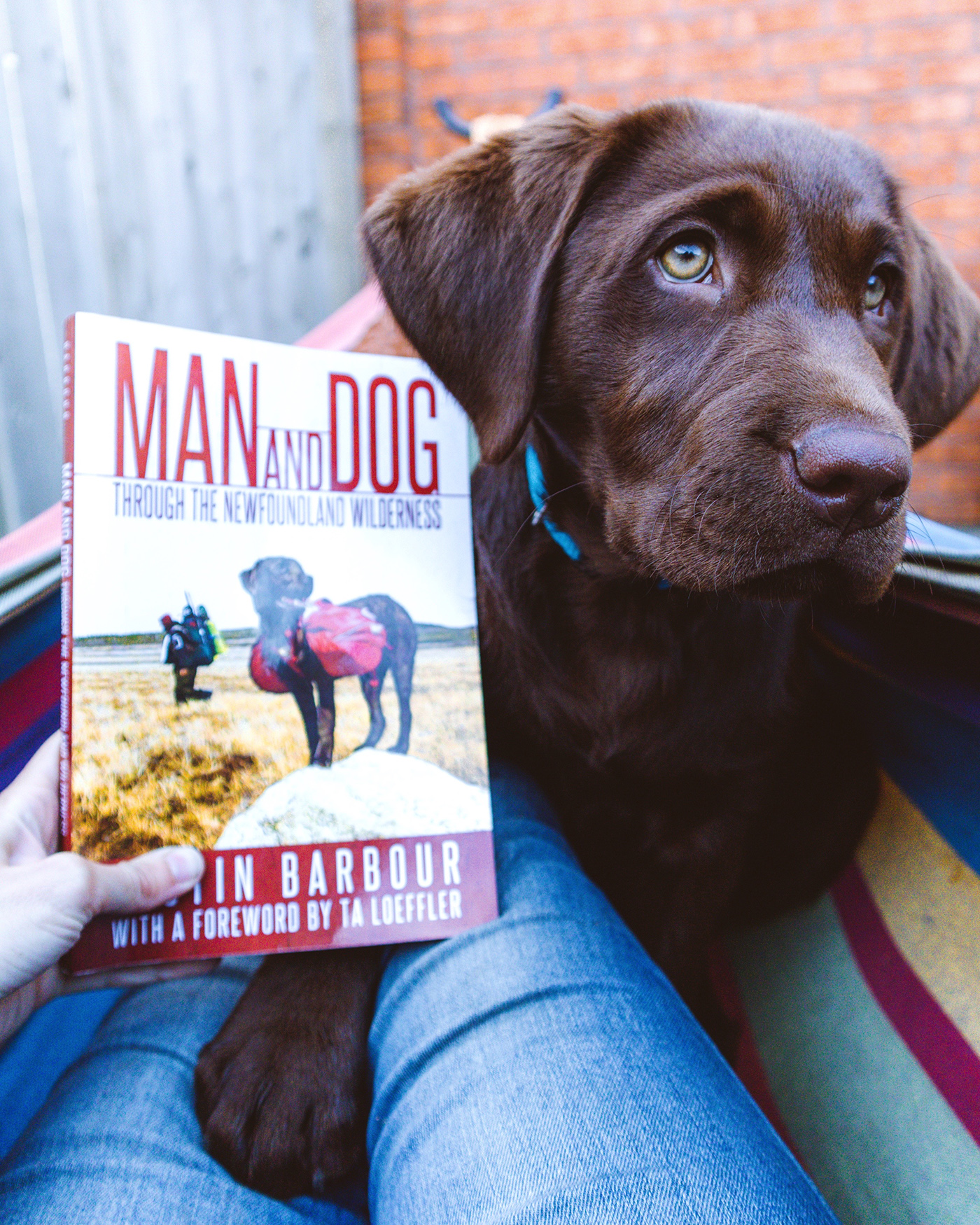 Woman and dog read Justin Barbour's Man and Dog: Through the Newfoundland Wilderness
