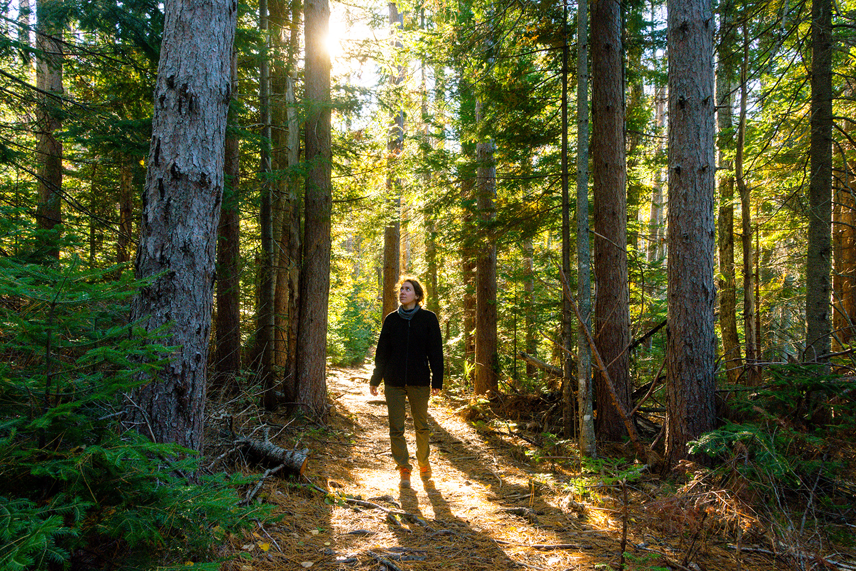 Woman walks through Kouchibouguac River Trail.