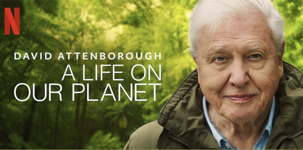"""Netflix's new documentary """"David Attenborough: A Life On Our Planet."""""""