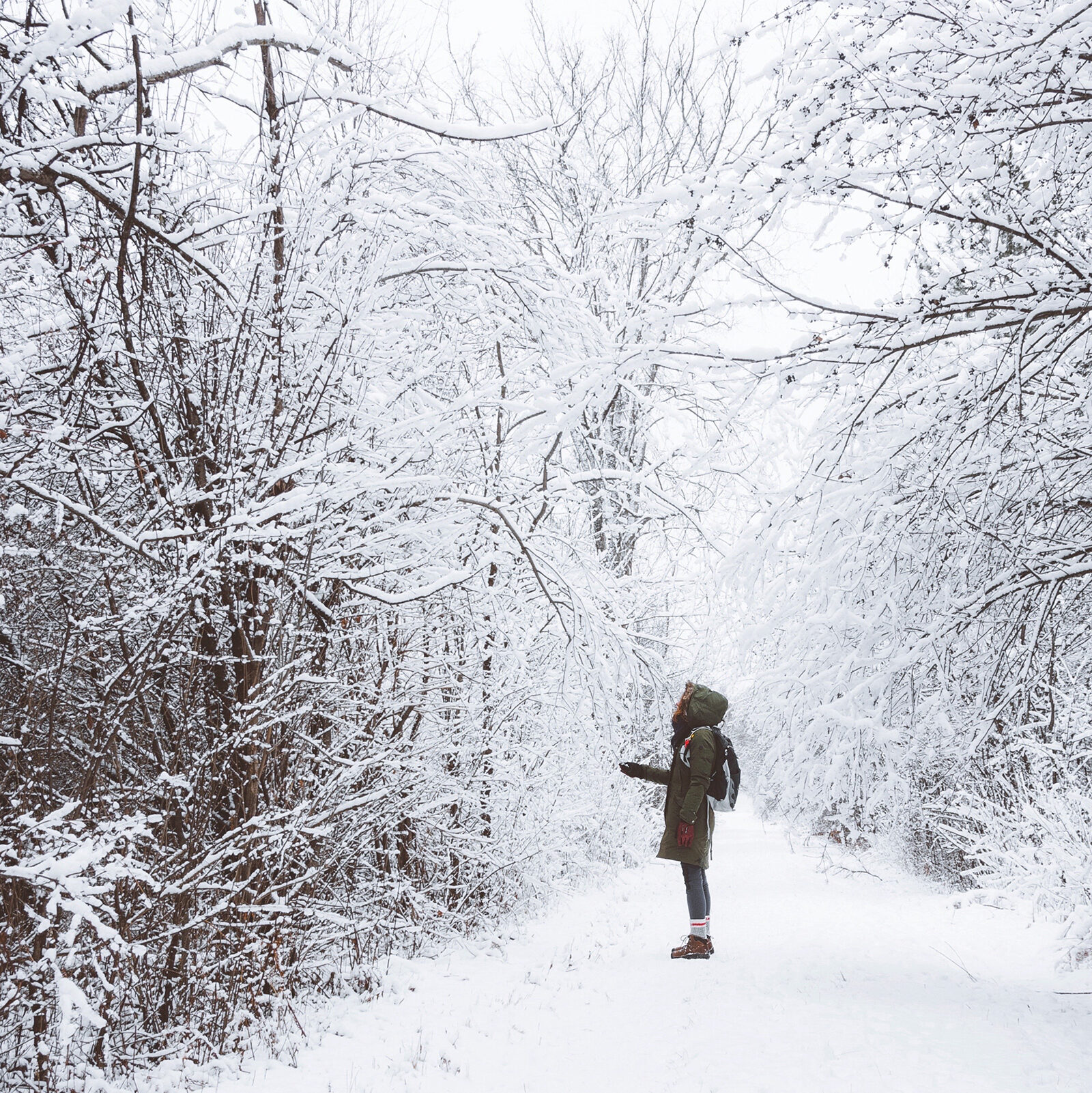 Woman standing on a winter trail looking up at the trees covered in snow