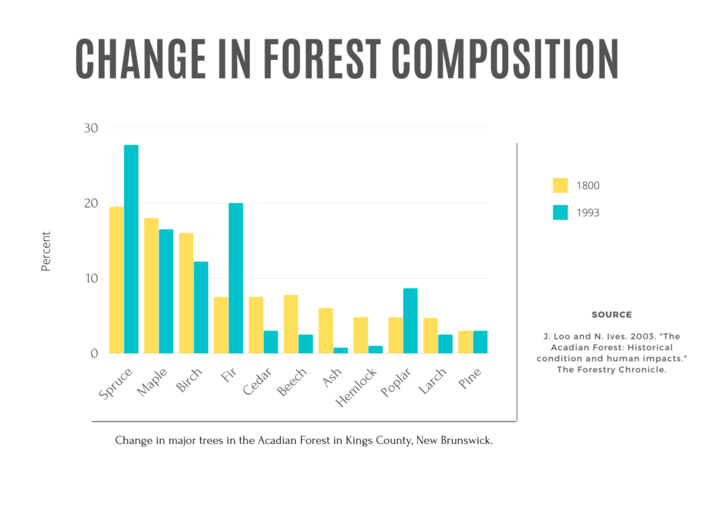 Graph that shows the change in forest composition in the AFR. Spruce, fir, and poplar trees have increased in frequency. Whereas, birch, cedar, beech, ash, and hemlock have decreased in frequency.