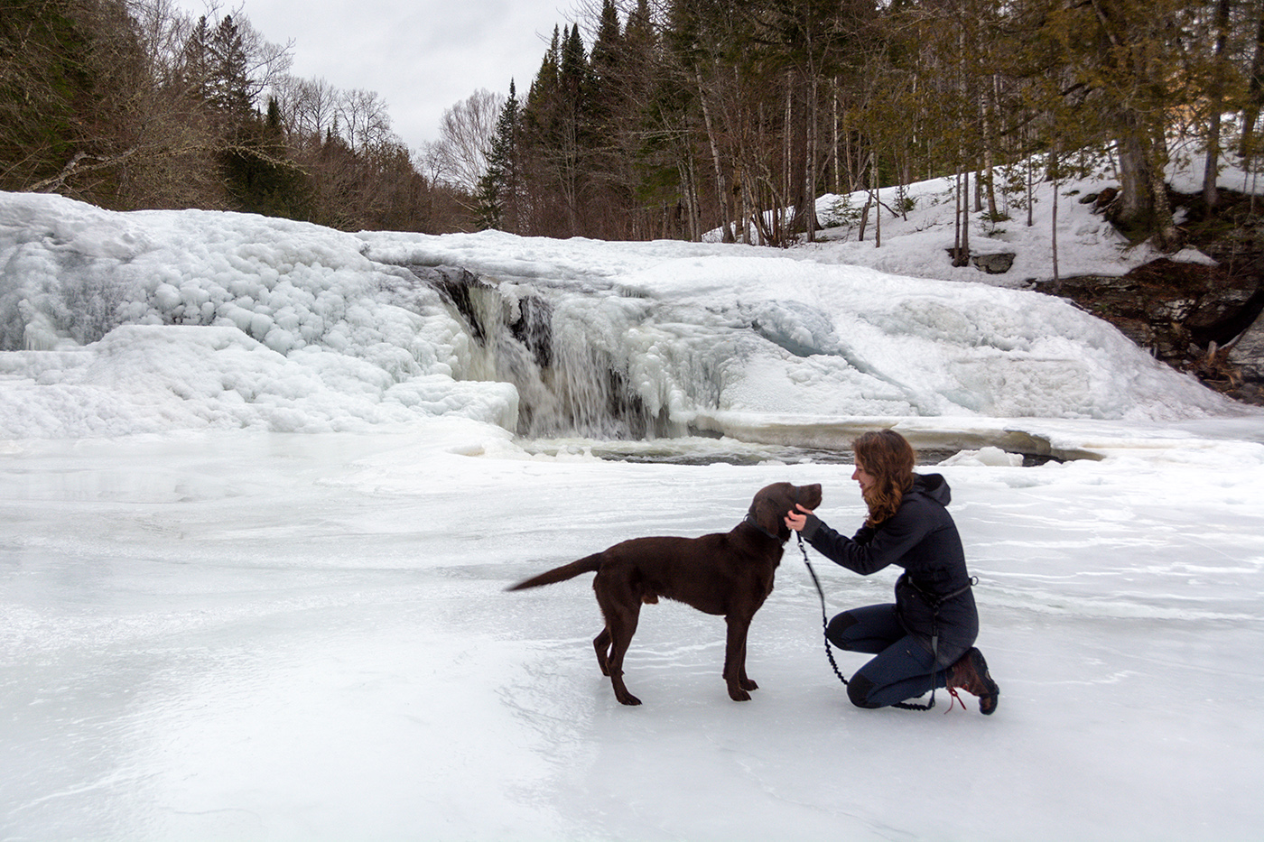 My dog, Moose, gets scratches in front of Dunbar Falls